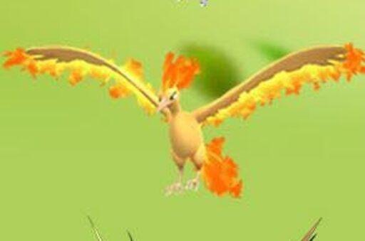 Pokémon Go Moltres, Zapdos, raic el pájaro legendario Articuno times complete